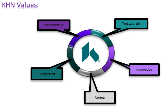 KHN Values option 1